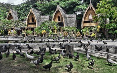 Bubohu Cultural Village